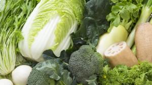 冬野菜の集合